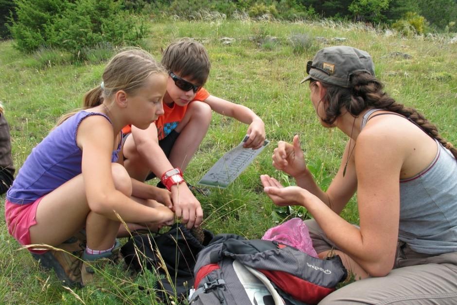 Flânerie naturaliste dans la forêt du Brusquet