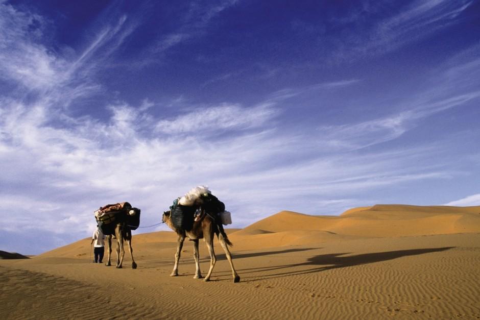 Treks et randos famille dans l'Atlas marocain