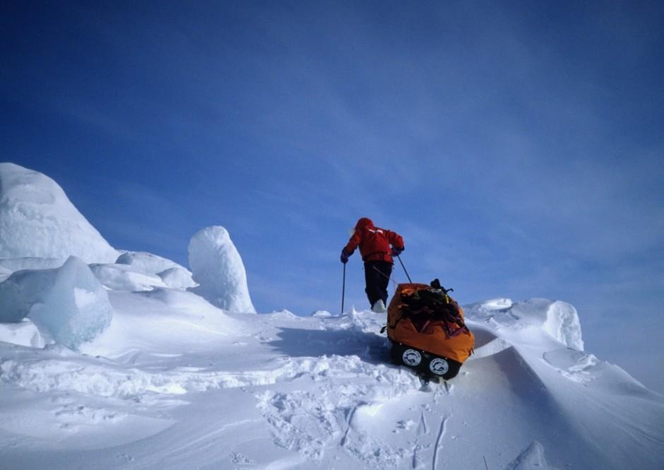 Du pôle nord aux Alpes du sud